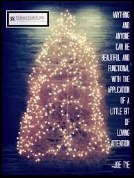 Christmas Tree Permits Colorado Buffalo Creek by 14 Best Tumbleweed Images On Pinterest Hilarious La La La And