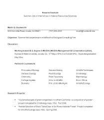 Finance Objective Resume Internship Financial Statement Examples