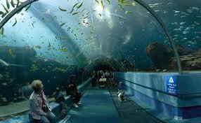parking aquarium la rochelle 28 images vakantiehuis in de