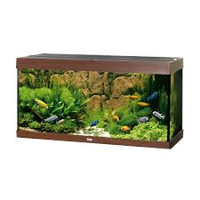Extra Large Fish Tank Decorations by Extra Large Fish Tank Ornaments Uk Fish Tank Ornament Sunken Ship