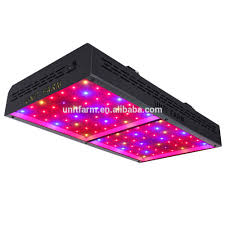 Lowes Grow Lights For Indoor Plants Lowes Grow Lights For Indoor