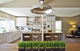 29 Fresh Wheatgrass Home Decor Ideas To Try In Spring