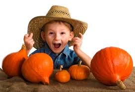 Pumpkin Pumpkin By Jeanne Titherington by Pumpkin Patch Dramatic Play