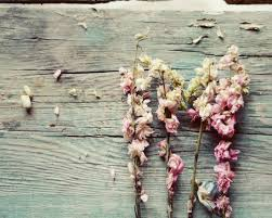 Teal Rustic Wall Decor Flower Print Pink And