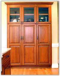 Stand Alone Pantry Closet by Stand Alone Pantry Cabinet For Kitchen Home Design Ideas