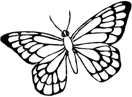 Butterflies Coloring Pages Cute Butterfly Page Of Color E Swallowtail