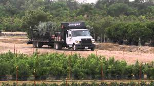 International TerraStar At Work: Juniper Landscaping, Inc. - YouTube Classic Fleet Work Trucks Still In Service 8lug Diesel Truck Landscape Trucks For Sale Used 2009 Isuzu Npr Truck In Ga 1722 Landscape Virginia For Sale Used On Buyllsearch Industrial Stock Photos 2018 Chevy Dump Elegant Knapheide 2019 Download Channel Landscaper Neely Coble Company Inc Nashville Tennessee Mger Of Landscaping Powerhouses More Noticeable With New Name Pa