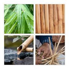 badregal bambus mit tür hier kaufen