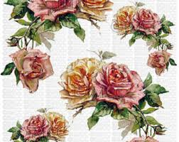 Instant Digital Download Cottage Cabbage Pink Roses Yellow Flowers Floral Vintage Era Transparent Background PNG