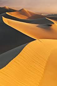 Earth Floor Biomes Desert by 25 Unique Dry Desert Ideas On Pinterest Desert Landscaping