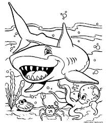Sharks Coloring Pages Cool Free Printable Shark