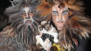 cats on broadway grumpy cat make broadway debut in cats playbill