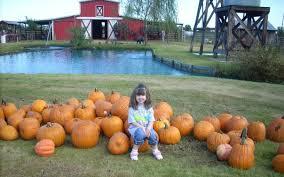 Ms Heathers Pumpkin Patch Louisiana by 17 Heathers Pumpkin Patch Kindergarten Cowgirl Weekends Are