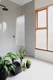 Plants In Bathrooms Ideas by 499 Best Home Bathrooms Images On Pinterest Bathroom Ideas