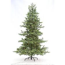 Artificial Pre Lit Douglas Fir Christmas Tree by Home Accents 75 Christmas Tree Chronolect