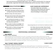 Professional Skills Examples Of Work For A Resume Skill