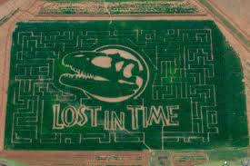 Pumpkin Patches In Okc by 9 Corn Mazes In Oklahoma