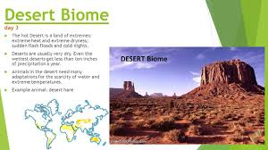 Earth Floor Biomes Desert by Key Vocabulary 5th Grade Team Time Ppt Video Online Download