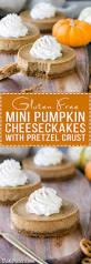 Pumpkin Swirl Cheesecake Bars by Gluten Free Mini Pumpkin Cheesecakes With Pretzel Crust Bakerita