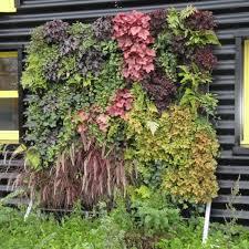pour mur exterieur 4 kits mur végétal extérieur flowall noir 42x40cm avec 32 plantes