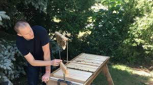 Beepods Top Bar Hive-side Stand Mount For Holding Bars Of Comb ... Bkeeping For Beginners Pt1 Video On How To Build A Top Bar Hive Feeder Set Up Behind Follower Board In Bkeeper Top Bar Hive Melissas Honey Bees Epic Beehive Swarm Trap Youtube How Transfer Brood Comb From Langstroth Frames New 200 Hives The Lowcost Sustainable Way A Bee Keeping Make Favorite Sewisabel Backyardhive And Bkeeeping Supplies Sale To Install Package Beverly Getting Started Your First Year As Beehive By Eco Box Eco Bee Box Modern