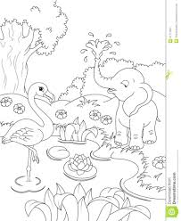 Intricate Coloring Pages Nature For Adults Printable Animals Page Flamingos Elephant Kids Large Size
