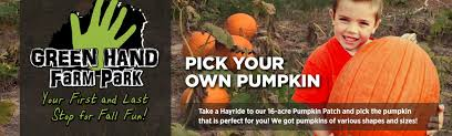 Pumpkin Patch Chesapeake Va by Kid Friendly Fall U0026 Halloween Activities Norfolk Newport News