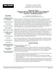 It Director Resume Examples Executive Samples Manager