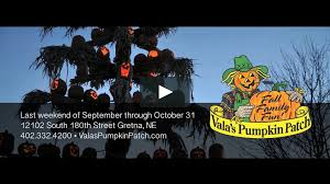 Valas Pumpkin Patch by Vala U0027s Pumpkin Patch 3min On Vimeo