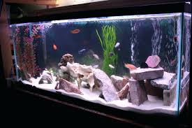 Saltwater Aquascaping Ideas Live Rocks In Your Saltwater Aquarium ... Aquascape Designs Surripuinet Aquascaping Live Rocks In Your Saltwater Aquarium Columns A Saltwater Tank Callorecom Need Ideas General Rfkeeping Discussion Week 3 Aquascaping 120 Gal Rimless Update Youtube 55g Vertical Tank Ideas Saltwaterfish Forum Aquascape With Rocks Google Search Aquariums Pinterest Bring Back The Wall Rock News Reef Builders Walls For Building Tiger Fish Aquascapinglive Rock Help Tcmas Forums