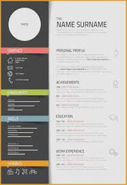 Ux Designer Resume Sample Lovely Template Graphic 9