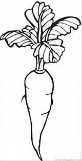Carrot 12 Coloring Page