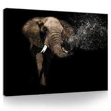 deko bilder drucke mit elefanten fürs schlafzimmer