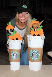 Chihuahua Puppies Halloween Costumes Starbucks Pumpkin Spice Lattes Cuties
