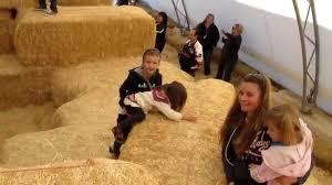 Halloween Farms In Illinois by Konow U0027s Corn Maze Homer Glen Il Pumpkin Farm Youtube