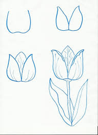 How To Draw A Flower Step By Easy More Flowers For Spring Art Class Ideas