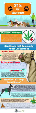CBD Oil For [GREAT DANES] How Cannabis Hemp Oil Can Help Your Dog Best Cbd Oil For Dogs In 2019 Reviews Of The Top Brands And Grateful Dog Treats Canna Pet King Kanine Coupon Code Review Pets Codes Promo Deals On Offerslovecom Hemppetproducts Instagram Photos Videos Cbd Voor Die Diy Book Marketing Buy Cannabis Products Online Mail Order Dispensarygta April 2018 Package Cannapet Advanced Maxcbd 30 Capsules 10ml Liquid V Dog Coupon Finder Beginners Guide To Health Benefits Couponcausecom Purchase Today Your Chance Win A Free Cbdcannabis Hashtag Twitter