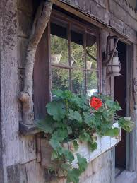 Window Box And Must Do For The Door Awningso Cute