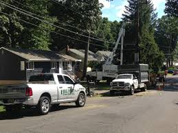 Tree Trimming & Stump Removal In New Jersey | Big Foot Tree Service 1999 Intertional 4900 Bucket Forestry Truck Item Db054 Bucket Trucks Chipdump Chippers Ite Trucks Equipment Terex Xtpro6070orafpc Forestry Truck On 2019 Freightliner Bucket Trucks For Sale Youtube Amherst Tree Warden Recognized As Of The Year Integrity Services Sale Alabama Tristate Chipper For Cmialucktradercom