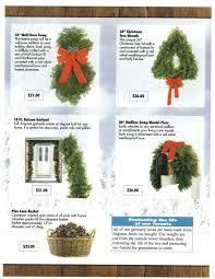 Christmas Tree Species by Christmas Tree Sale Boy Scout Troop 197 Murfreesboro Tn