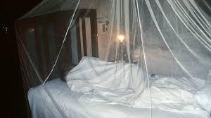 anti mückenmittel so schützen sie sich vor mückenstichen