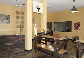 Safari Decorated Living Rooms by Decor Safari Theme Decorating Ideas Ideal Safari Themed Living