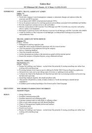 Related Job Titles Travel Resume Sample
