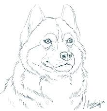 Siberian Husky Coloring Pages With Realistic
