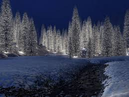 Crab Pot Christmas Trees by Christmas Scenery Free Download Hd Snowy Christmas Scene