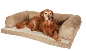 Serta Dog Beds by 11 Of The Greatest Dog Beds In The History Of Dog Beds The Barkpost