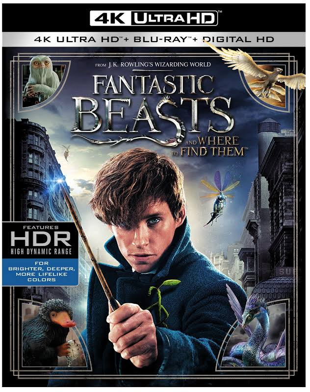 Fantastic Beasts and Where to Find Them - 4K