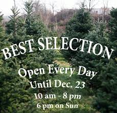 Christmas Tree Shops Near York Pa by Perfect Christmas Tree Farm 89 Photos Christmas Trees 999 Us