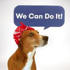 Rosie The Riveter Halloween Diy by The Best Diy Bandana Costumes For Dogs Bruce Rosie The Riveter