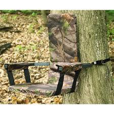 Gander Mountain Stadium Chairs by Guide Gear 20 U0027 Double Rail Ladder Tree Stand With Hunting Blind